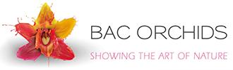 Bac Orchids logo